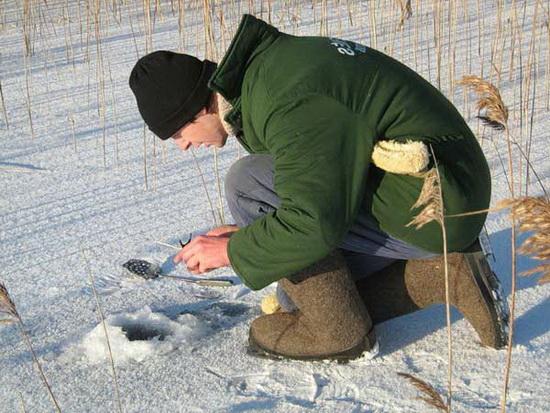 Ловля плотвы в декабре на мормышку 2
